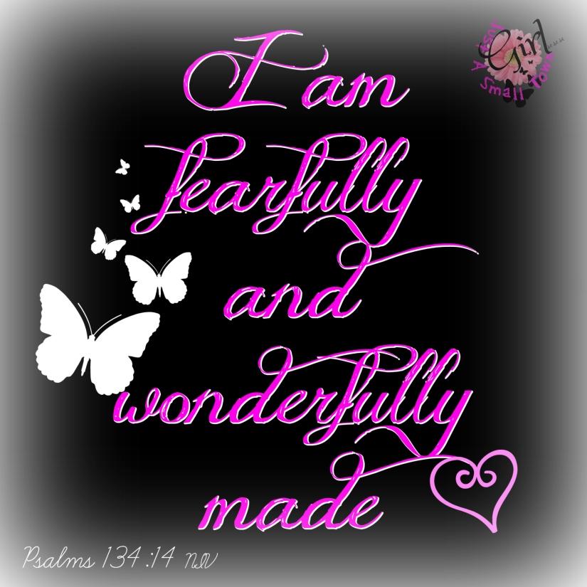 psalm 139 14 stg.jpg