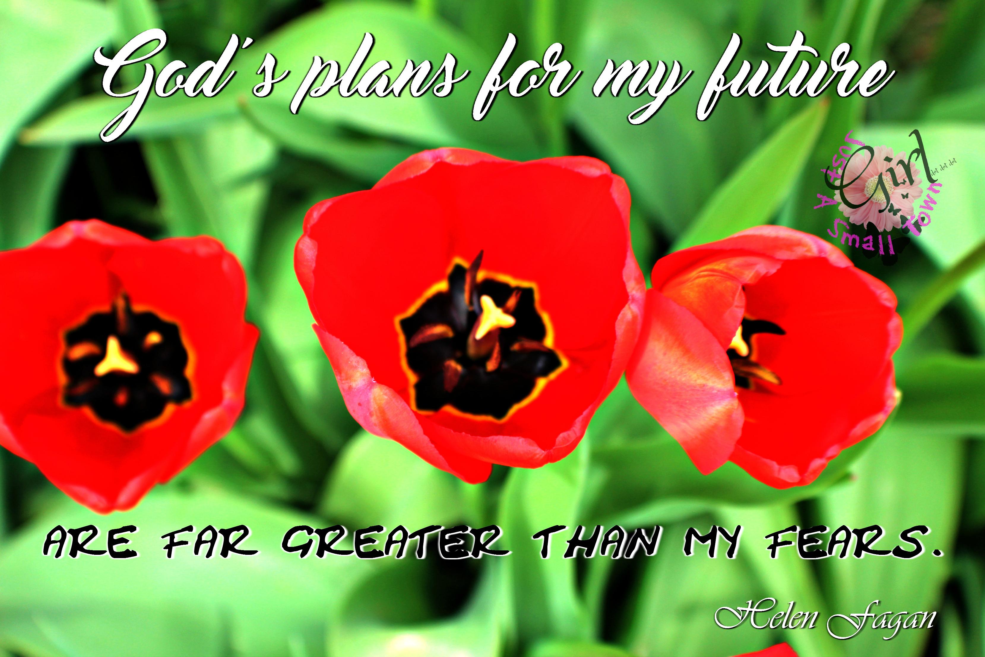 god's plans STG